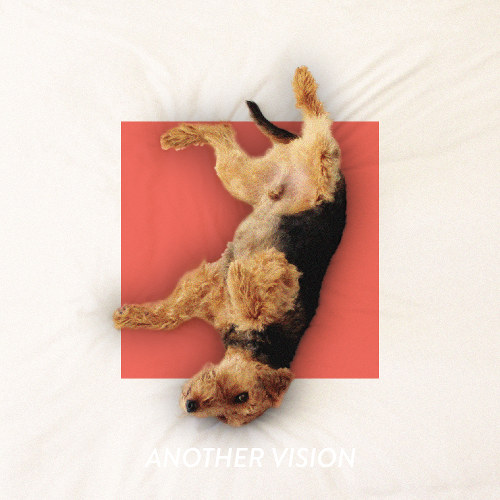 Another Vision - Off The Leash